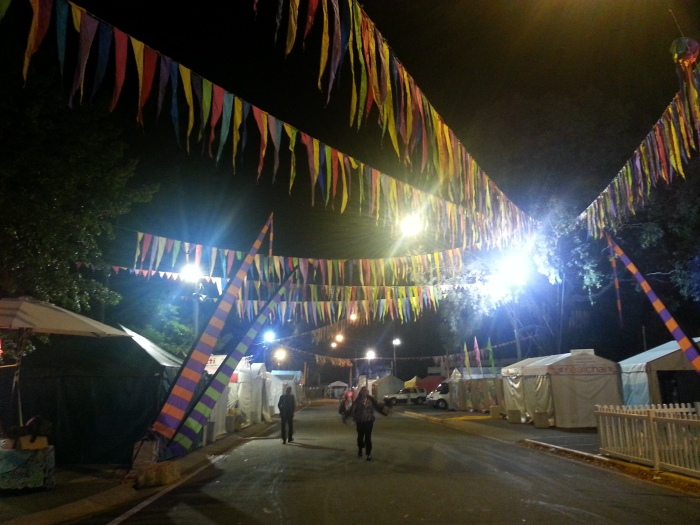 The iconic National Folk Festival bunting