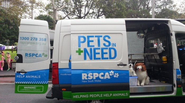 2014 Sydney Mardis Gras: Hitching A Ride With RSPCA NSW
